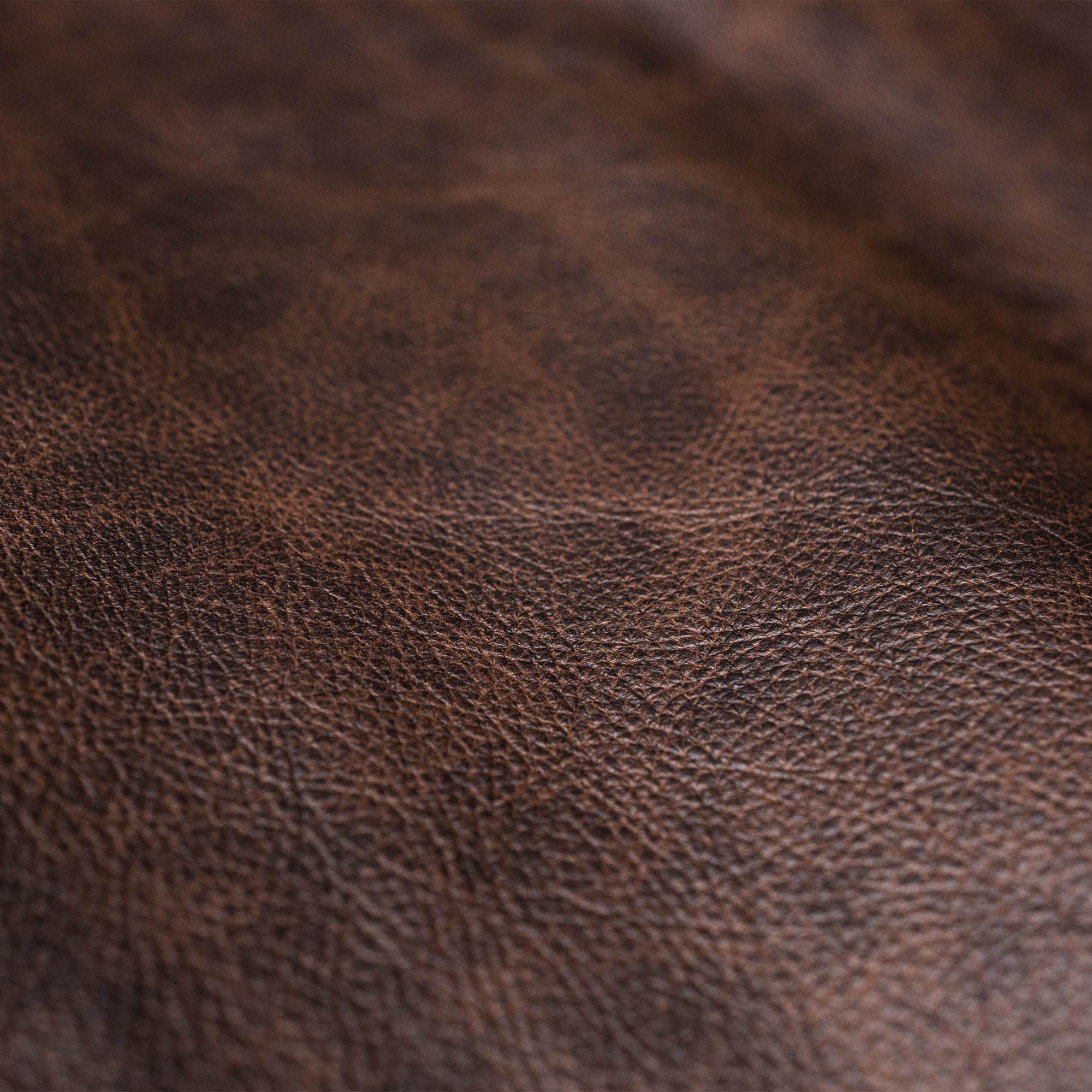 shangri-la-heritage-varenne-marbled-brown-steerhide-jacket-still-life-leather
